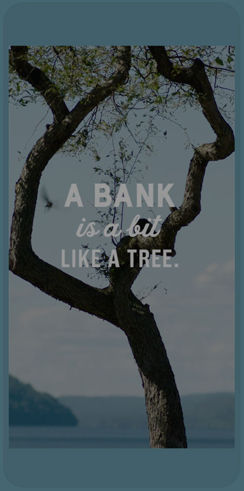 A bank is a bit like a tree Country Bank